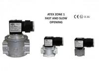 DN 15-20-25-32-40-50-65-80-100 EEx